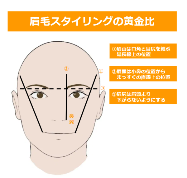 メンズ眉毛の理想の形