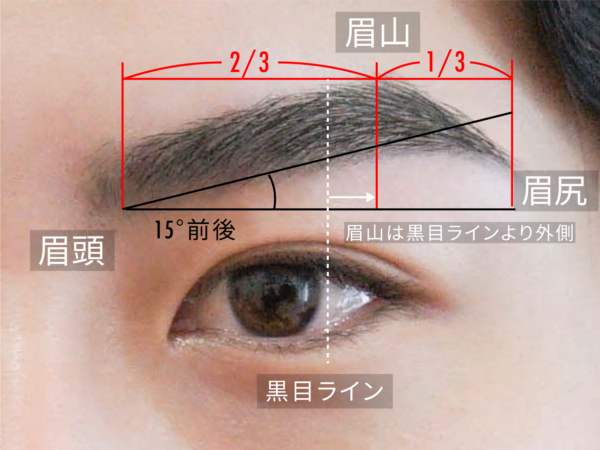 理想の眉毛の形