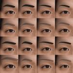 メンズ眉毛の形リスト